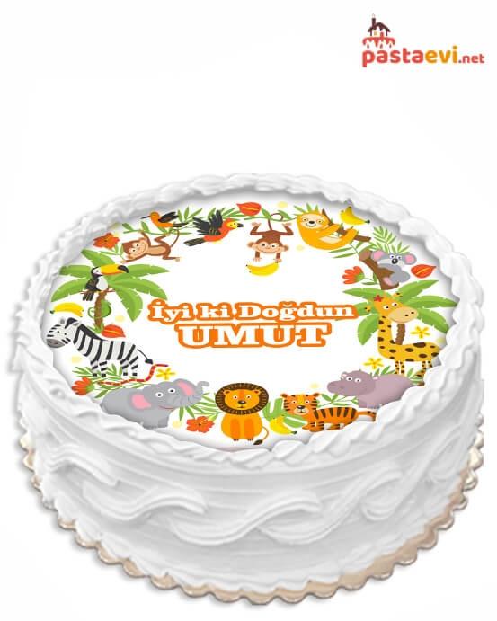 Hayvanlar Alemi Resimli Pasta