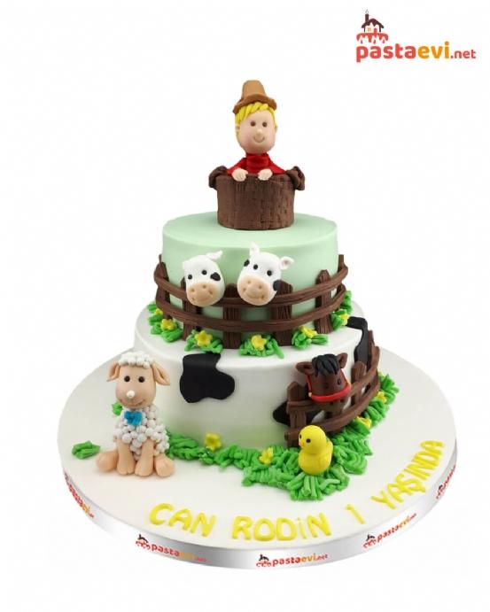 Ali Baba ve Çiftliği Doğum Günü Pastası